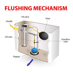 flushing mechanism  Flush toilet