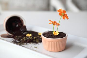 chocolate pudding dirt
