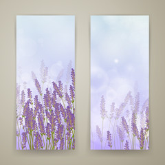 Vector Illustration of Two Lavender Banners