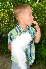 Kleiner Junge isst zuckerwatte