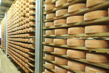 stoccaggio di formaggi