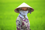 Vietnamese Farmer in the Rice Field, Southern Vietnam