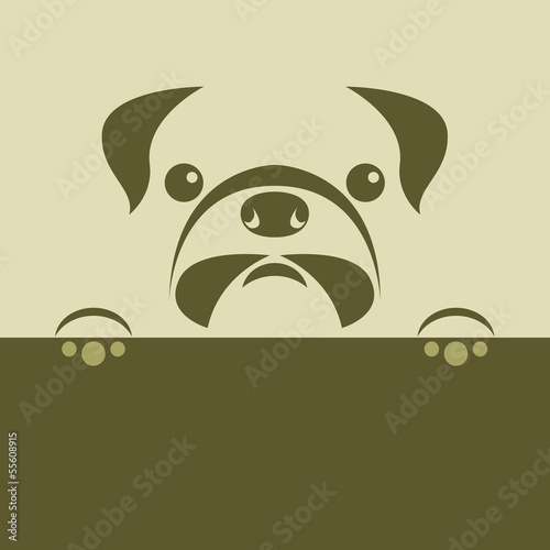 Vector image of an pug puppy