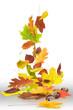 Herbst 19