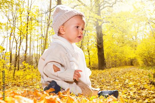 baby sitzt im laubwald