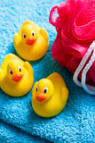 yellow bath ducks and bath puff