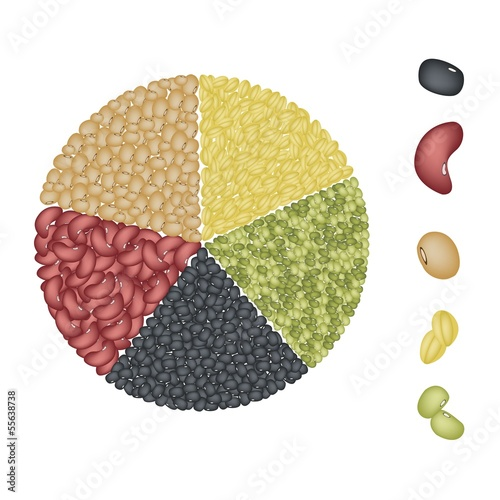Set of Beans in Pie Chart Concept