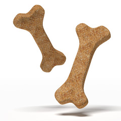 Brown dog biscuit