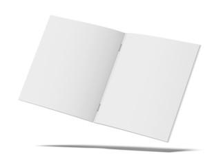 Blank folded flyer