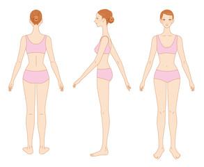 女性の身体