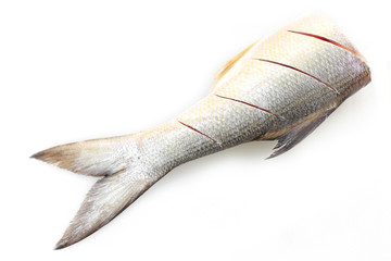 half fish isolated on white background