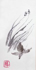 Butterfly in wind