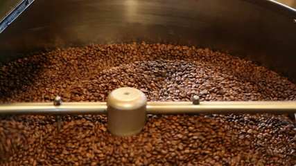 coffee beans drying in the dryer