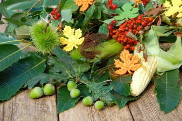 Herbstfrüchte auf Holzuntergrund