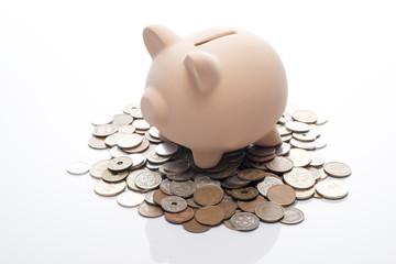 白背景に硬貨と豚の貯金箱