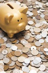 沢山の硬貨と豚の貯金箱