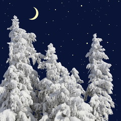 Firs under snow against the night sky with the moon
