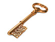 Business - Golden Key.