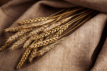 Ears of wheat over linen background
