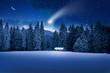 Leinwandbild Motiv Weihnachtswald