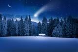 Weihnachtswald - 55658938