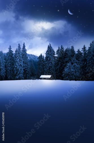 Leinwandbild Motiv Winterwald