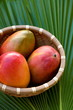 Three mangoes in a wicker basket on a palm leaf