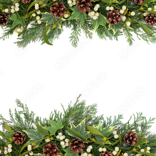 Christmas Greenery Border