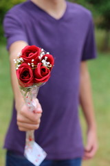 Giving Roses