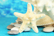 White starfishes on blue wooden table on sea background