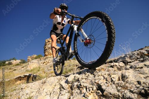 downhill rider - 55671313