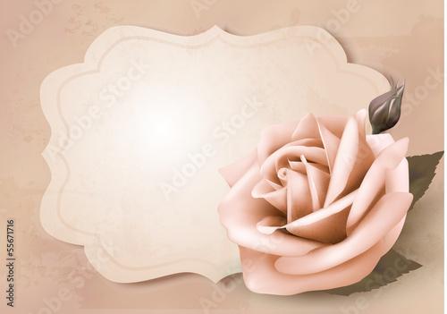 Deurstickers Retro Retro greeting card with pink rose. Vector illustration.