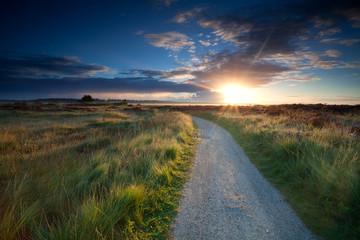 morning sunbeams over rural road