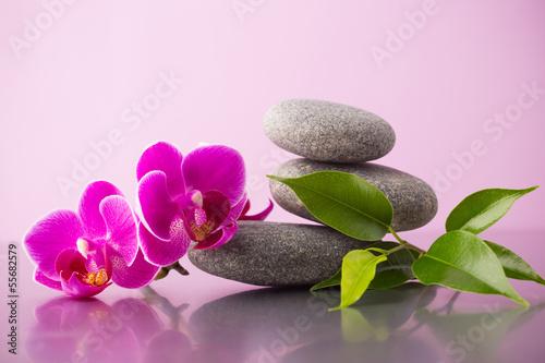 Spa stones. - 55682579