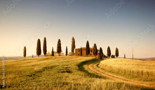In wilden Gegenden der Toskana