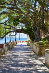 Park In San Juan