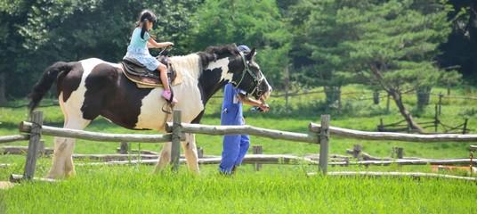 馬と少女 C