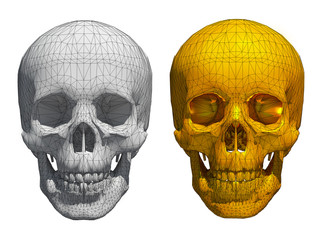 3d White and golden skull wireframe isolated on white