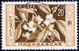 Coffee (Madagascar 1956)