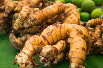 galangal on green background
