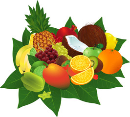 Ripe fruits. Vector.