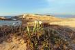 Spiaggia di Su Palloso in Sardegna