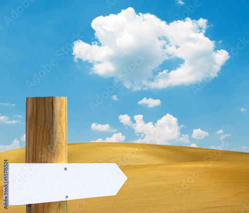 Empty wooden sign in desert