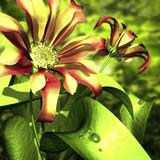 flowers 3d - 55717944