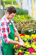 Blumenzucht - Gärtner in seiner Großgärtnerei
