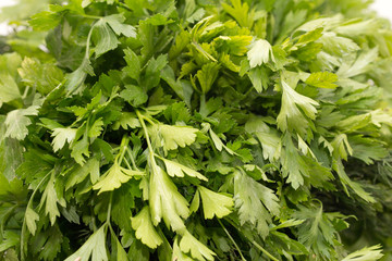 Parsley as a backdrop. macro
