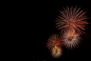 Fireworks display in the night sky