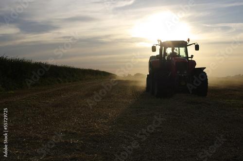 Fototapeten,landwirtschaft,traktor,ernten,corn
