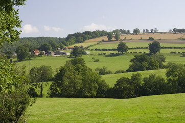 Yorkshire Wolds and Farm