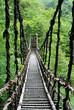 Leinwanddruck Bild - Pont de lianes Kazura-bashi à Oku Iya, Shikoku, Japon